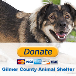 Image to donate to Gilmer County Animal Shelter